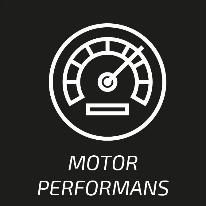 performans2